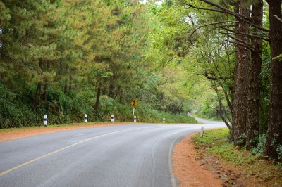 ID-100163409curve in road photo