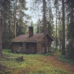 cabin in woods